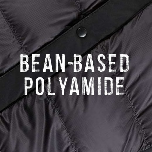 Bean-based polyamide